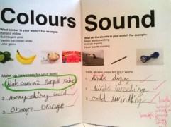 Sensory booklet